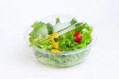 Fresh vegetables salad Royalty Free Stock Photos
