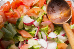 Fresh vegetables in the salad, tomato, cucumber, radish Royalty Free Stock Photography