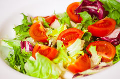 Fresh vegetables salad Royalty Free Stock Photo