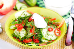 Fresh vegetables salad with zucchini Stock Images
