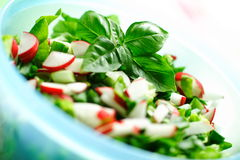 Fresh vegetables salat Stock Image