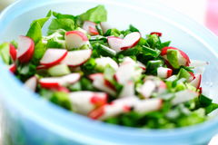 Fresh vegetables salat. Bowl of fresh vegetables salat: radish, salat, chive and basil Stock Photo