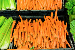 Fresh vegetables for sale at a grocery store. Carrots and celery stacked in supermarket bins Royalty Free Stock Image