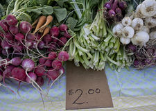 Fresh vegetables for sale. Just harvested radishes, carrots, onions,celery for sale at local farm market Royalty Free Stock Photos