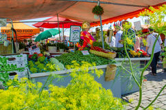 Fresh vegetables for sale at an outdoor market in Helsinki, Finland Royalty Free Stock Photography