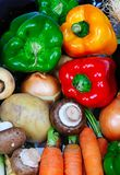 Fresh vegetables. Selection of fresh vegetables including green, orange and red capsicum, brown cap mushrooms, carrots, potato, parsnip and onion Royalty Free Stock Images