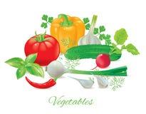 Fresh vegetables. A set of fresh, tasty vegetables Royalty Free Stock Photos