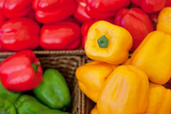 Fresh vegetables on the shelves, bell peppers Royalty Free Stock Image