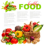 Fresh vegetables. shopping basket. healthy nutrition Stock Images