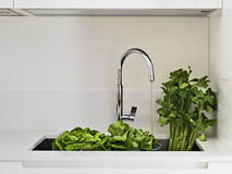 Fresh vegetables on the sink Stock Photography