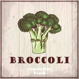 Fresh vegetables sketch background. Vintage hand drawing illustration of a broccoli Stock Photo