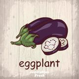 Fresh vegetables sketch background. Vintage hand drawing illustration of a eggplant Royalty Free Stock Images