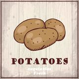 Fresh vegetables sketch background. Vintage hand drawing illustration of a potatoes Stock Photo