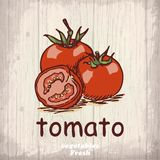 Fresh vegetables sketch background. Vintage hand drawing illustration of a tomato Stock Photos