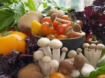 Fresh vegetables for soup. A medley of fresh vegetables that will be made into homemade soup Royalty Free Stock Photography