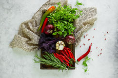 Fresh vegetables, spices and herbs in wooden box in rustic style. Stock Image