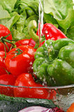 Fresh vegetables with splashes of water Royalty Free Stock Photography
