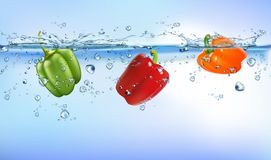 Fresh vegetables splashing into blue clear water splash healthy food diet freshness concept isolated white background. royalty free illustration