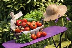 Garden spirit Stock Image
