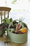 Fresh vegetables on table close-up Royalty Free Stock Image