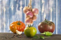 Fresh vegetables- tomato, parsley, garlic, pepper, onion, basil Royalty Free Stock Images
