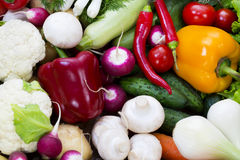 Fresh vegetables tomatoes cucumber squash. And greens background close-up Royalty Free Stock Photo