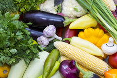 Fresh vegetables tomatoes cucumber squash. And greens background close-up Stock Images