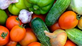 Fresh vegetables top view background stock video