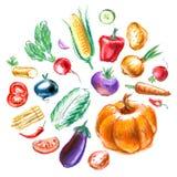 Fresh vegetables vector logo design template Royalty Free Stock Photography