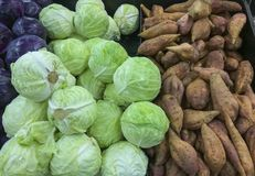 Different sorts of the vegetables on a market place. Fresh vegetables are very popular on markets of the Middle East Royalty Free Stock Images
