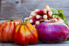 Fresh vegetables from the Weekly Market Stock Image