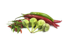 Fresh Vegetables. On White background Stock Photos