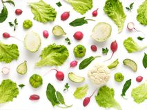 Fresh vegetables on a white background. Vegetable food background. Pattern of cabbage, radish, lettuce, green pepper, young garlic, sorrel. Top view Royalty Free Stock Image
