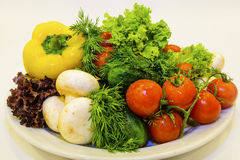 Fresh vegetables on a white plate. Healthy  fresh vegetables and greens on a white plate Stock Images