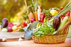 Fresh vegetables in wicker basket. Fresh organic vegetables in wicker basket on table Royalty Free Stock Images