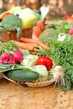 Fresh  vegetables. In wicker basket on table Royalty Free Stock Photos