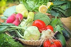 Fresh  vegetables in wicker basket. On table Stock Image