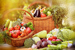 Fresh vegetables in wicker baskets. On table Royalty Free Stock Image