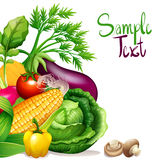 Fresh Vegetables With Sample Text Space Royalty Free Stock Images