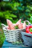 Fresh vegetables on wood stock image