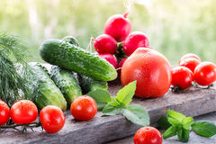 Fresh  vegetables  on wood table in the garden. Fresh organic vegetables  on wood table in the garden Stock Photos