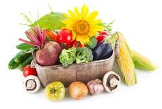 Fresh vegetables in wooden basket Stock Photo