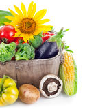 Fresh vegetables in wooden basket Royalty Free Stock Photography