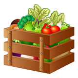 Fresh vegetables in a wooden box. Illustration of Fresh vegetables in a wooden box Royalty Free Stock Photo