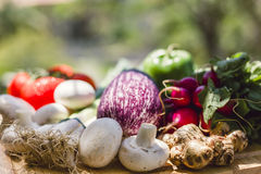 Fresh vegetables on wooden chopping board Stock Photography