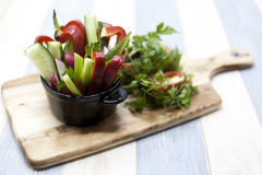 Fresh vegetables on a wooden plate. Red pepper, tomato, cucumber, radish, parsley, dill healthy diet. Fresh vegetables on a wooden plate. Red pepper, tomato Stock Images