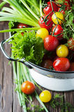 Fresh vegetables on the wooden table Stock Images