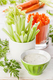 Fresh vegetables with yoghurt Stock Image