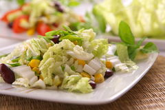 Fresh vegetarian salad Royalty Free Stock Photos