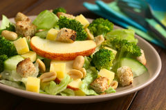 Fresh Vegetarian Salad Stock Image